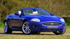Zakup samochodu osobowego na firmę – VAT czy PCC